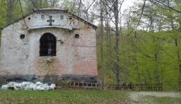 """Шума со боја на хризолит го чува манастирот """"Св. Ана"""" во Маловишта"""