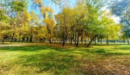 Битолското шеталиште во сите бои на есента